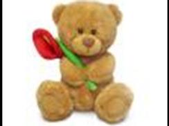 Медвежонок Сэмми с красной каллой муз.(18см)