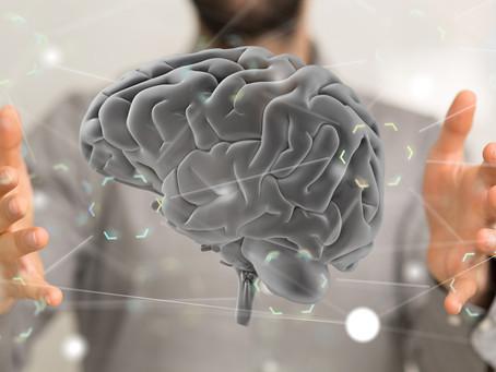 Les neurosciences au service de la formation professionnelle !