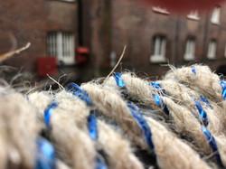 Spiny Seahorses Rope
