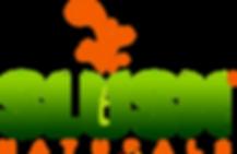 temp slush logo.png