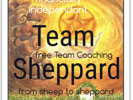My NEW coaching Project: Team Sheppard