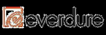 everdure-logo_1536203528__07310.original.png