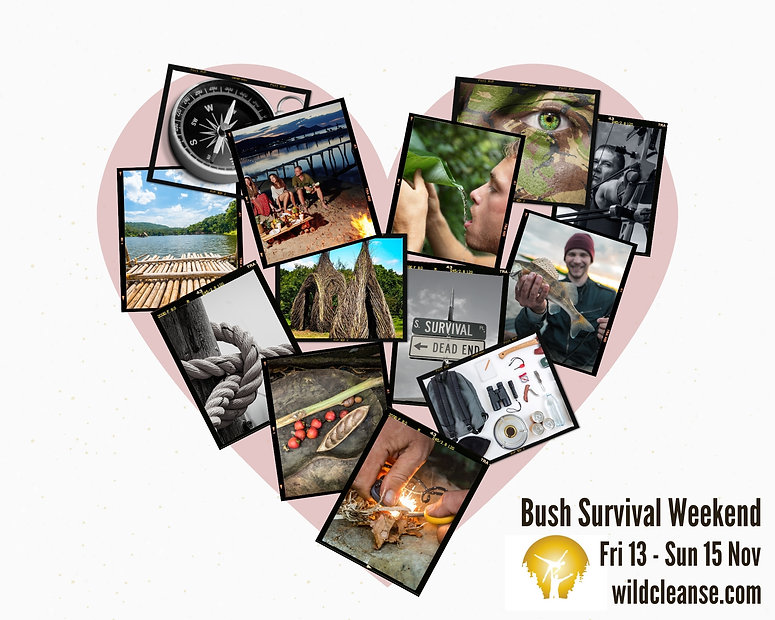 Bush Survival Heart Promo Insta.jpg