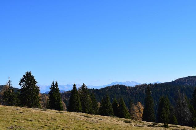 Marschalkhof_Ultental (15 von 94).jpg