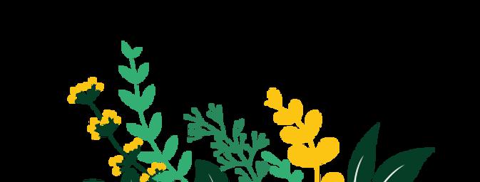 Blumen.png