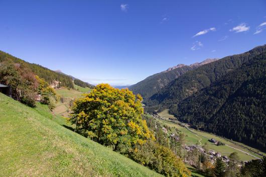 BIO Untersteinhof_Urlaub_auf_dem_Bauernh