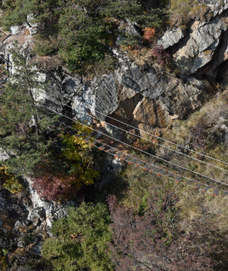 wire_bridge_CHL2440.jpg