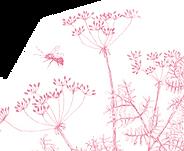 Blumen2.png