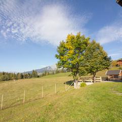 Gasthof_Alpenrose_Vöran_-9331.jpg