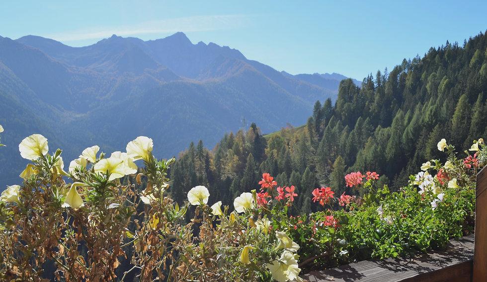 Ferienwohnungen | Thalhof im Ultental | Bergbauernhof | Meran | Preise Angebot