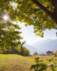 Gasthof_Alpenrose_Vöran_-9319.jpg