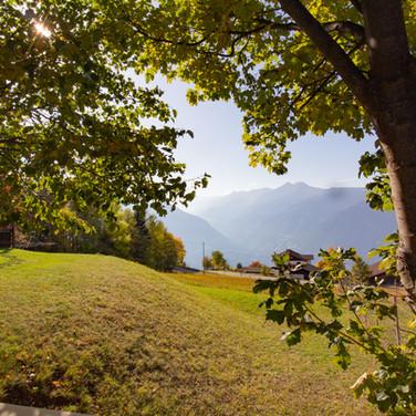 Gasthof_Alpenrose_Vöran_-9316.jpg
