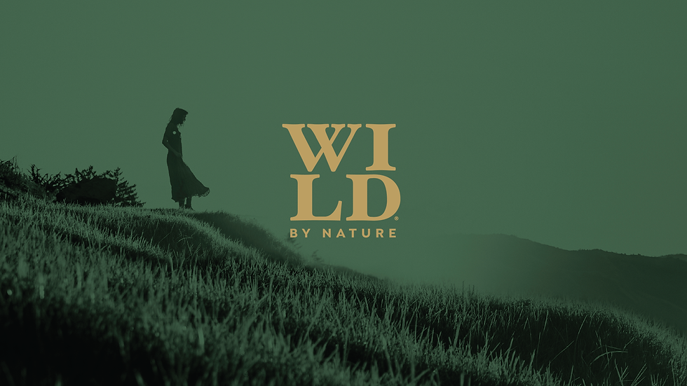 WBN_WEBSITE-06.png
