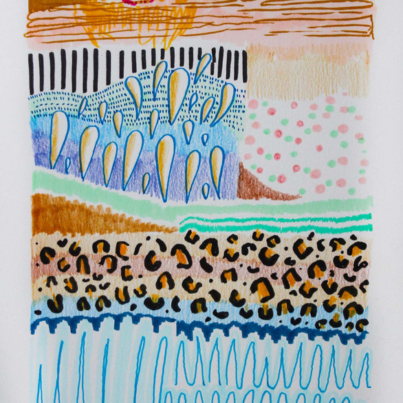 Cheetah Hamantaschen.jpg