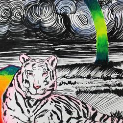 Tiger Rainbow Land