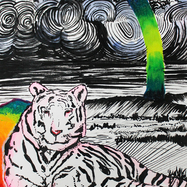 Tiger Rainbow Land