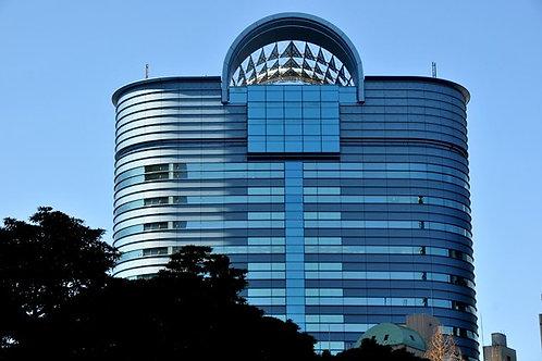 Business registration investigation (USA and Japan) 企業登録調査(日米)