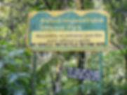 Bwindi-Impenetrable-National-Park.jpg