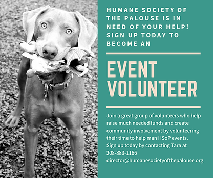 Promotion for event volunteers to assist in future events hosted by HSoP.