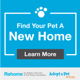 A direct link to Rehome by Adopt-a-Pet