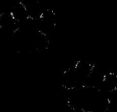netclipart.com-clip-art-dog-42430.png