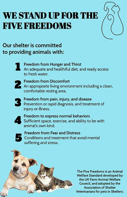 Five Freedoms.jpg