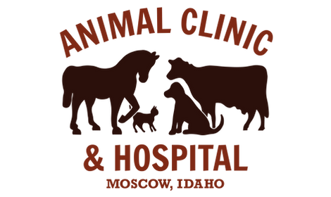 Moscow-AnimalClinic-logo2016-02.png