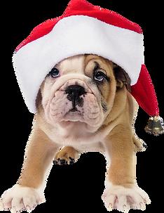 netclipart.com-santa-hat-clip-art-71439.