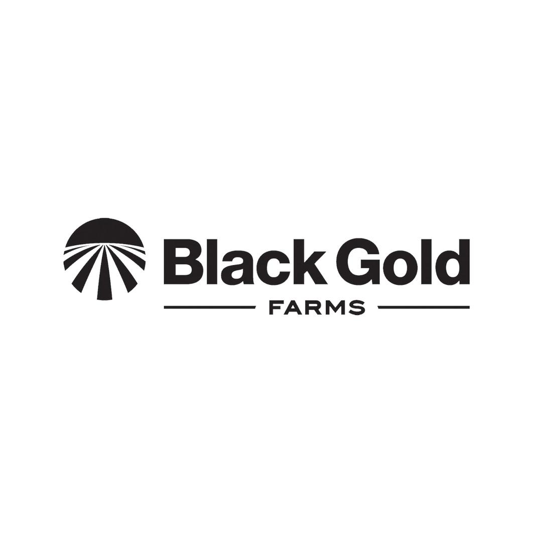 BlackGold_Blk PNG.00_00_00_00.Still001.j