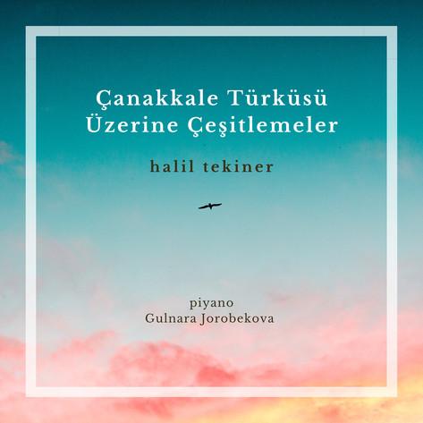 2020 Canakkale Turkusu