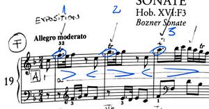 Haydn Sonata in F XVIF3