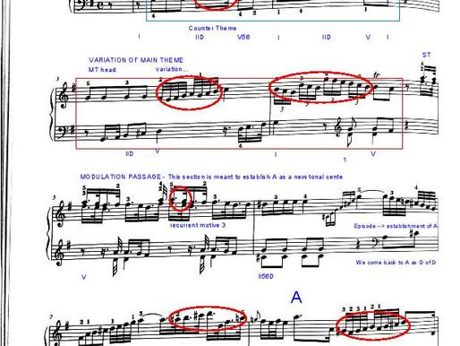 Haydn Sonata XVI:6 - EXPOSITION ANALYSIS