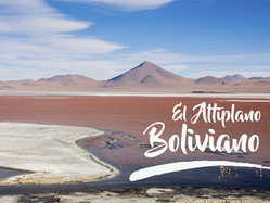 El altiplano boliviano