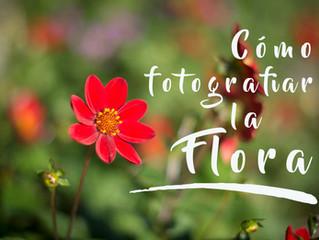 Cómo fotografiar la flora