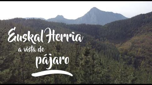 Euskal Herria a vista de pájaro