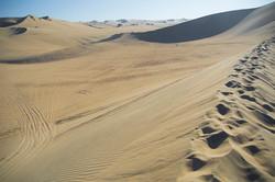 Desierto de Ica: La Huacachina
