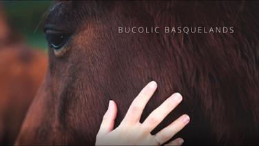 Bucolic Basquelands