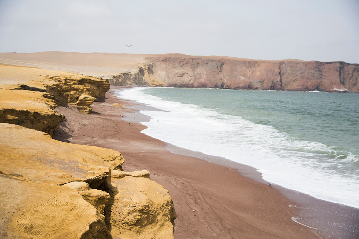 Paracas Reserva Natural