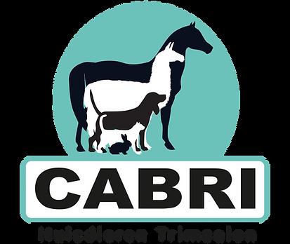 Logo Cabri.png