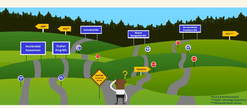 EU regulatory pathways (I): All pathways lead to...