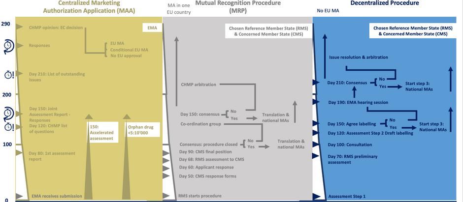 EU regulatory pathways (II): all processes lead to Market Authorization decisions...