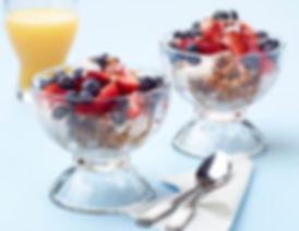 YogurtGranolaBowl_preview.jpeg