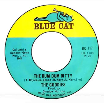 The Dum Dum Ditty Record