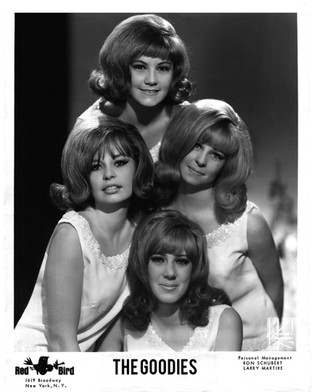 The Goodies - '60s Legendary Girl Group 1964