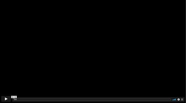 AACOPYScreen Shot 2021-01-04 at 11.01.04