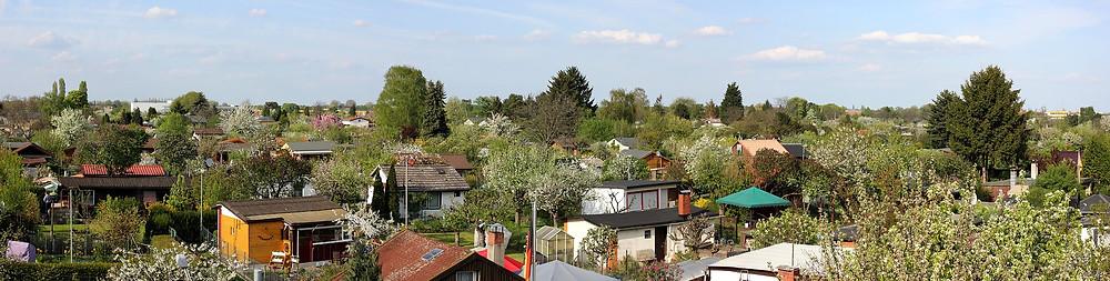 Rund 71.000 Kleingärten prägen Berlins Stadtgrün. Darunter befinden sich auf einer Fläche von 3,7 Mio m2 allein in Neukölln 90 Kleingartenlagen mit rund 9.300 Pächtern.              (Foto: javallma/pixabay)