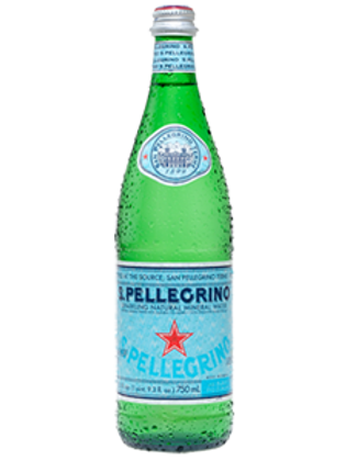 San Pellegrino 16.9 oz