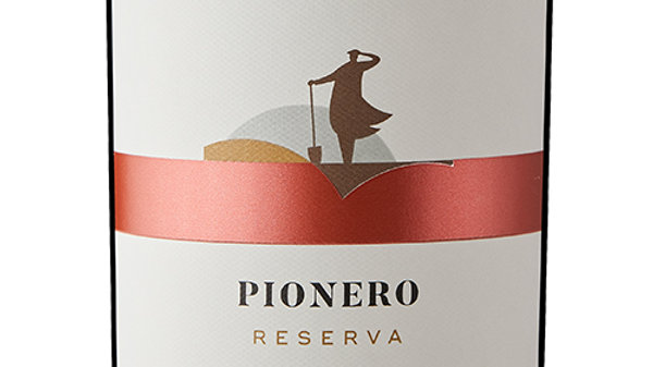 Pionero Cabernet Sauvignon 2018 'Spicy, tangy, fruity - drink me with curry'