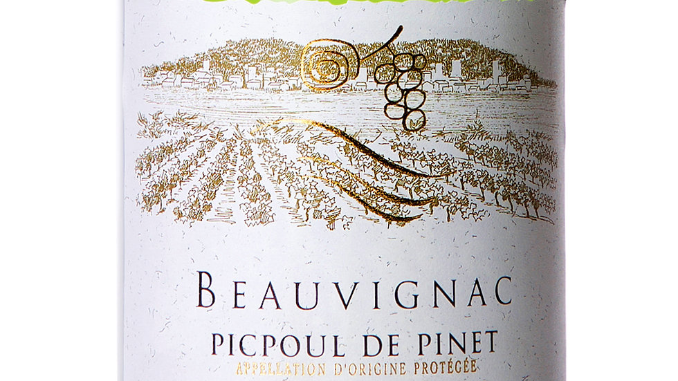 Picpoul de Pinet St Clair 2019  'Dainty, crisp aperitif, I love it with seafood'