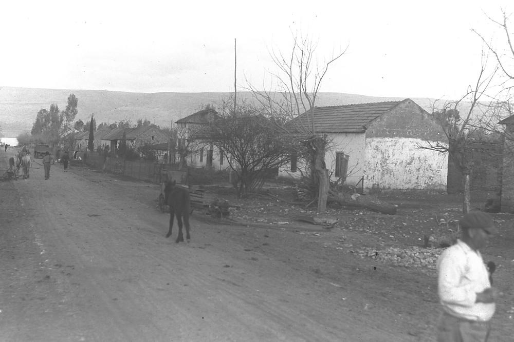 יסוד המעלה 1937